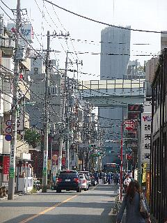 t4566瀬田玉川神社 例大祭 2009